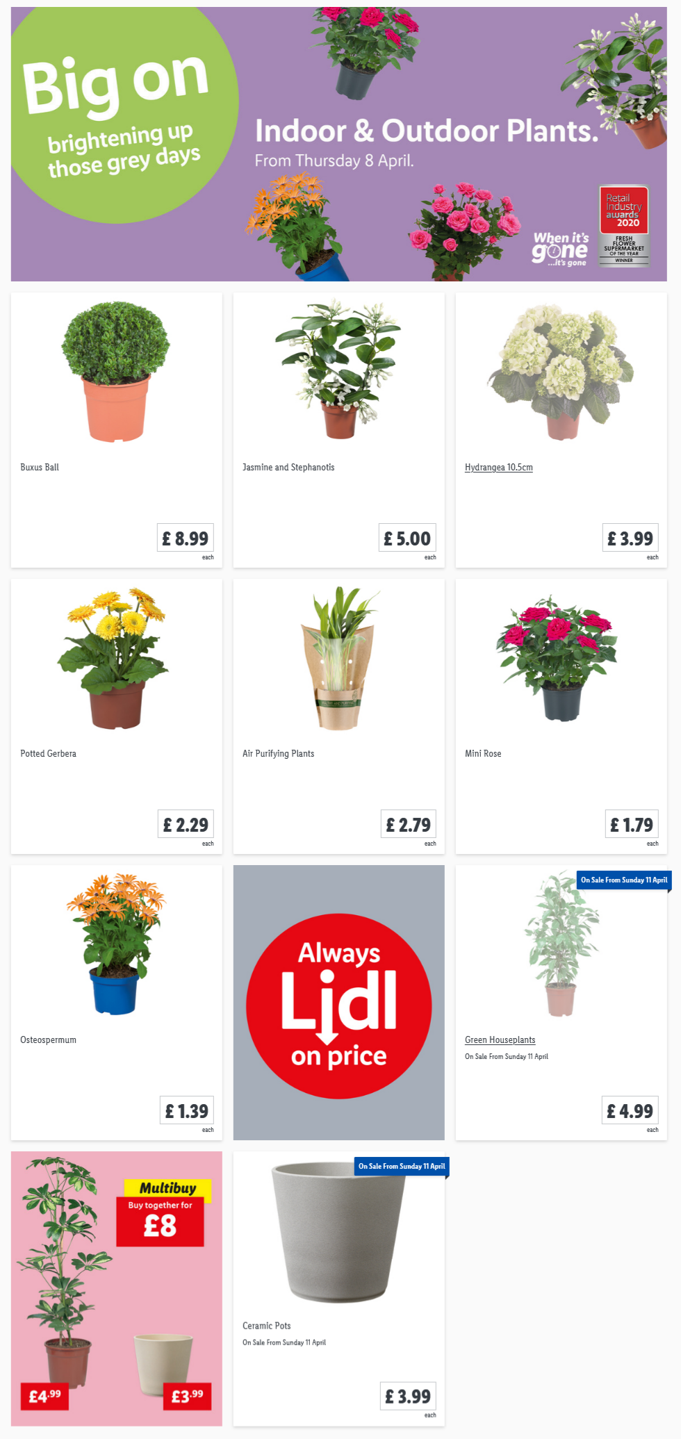 LIDL Offers this Thursday From 8th April 2021 LIDL Indoor & Outdoor Plants